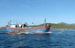 Quảng Bình: Cứu hộ thành công tàu cá cùng 15 ngư dân gặp nạn