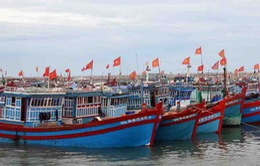 Quảng Nam: Tặng máy bộ đàm hàng hải cho ngư dân đánh bắt xa bờ