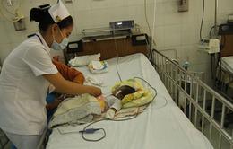 TP.HCM: Gia tăng bệnh nhân nhập viện vì thủy đậu