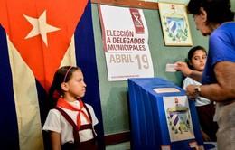 Khoảng 8,5 triệu cử tri Cuba đi bỏ phiếu bầu cử cấp địa phương