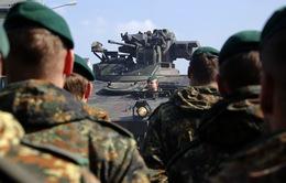 NATO chuẩn bị tập trận lớn đối phó với IS