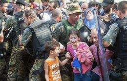 Hàng trăm người di cư vượt biên vào Macedonia