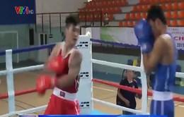 Giải vô địch quyền Anh toàn quốc: Trương Đình Hoàng chiến thắng dễ dàng