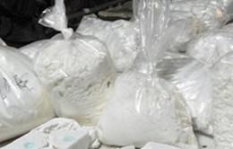 Bolivia bắt giữ 1,8 tấn cần sa