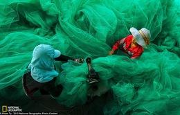 Ảnh Việt Nam lọt top ấn tượng cuộc thi ảnh National Geographic 2015