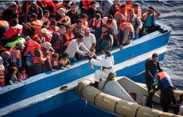 Châu Âu bác bỏ ý tưởng phân chia quota người tị nạn