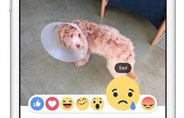 Facebook thử biểu tượng cảm xúc mới thay thế nút Dislike
