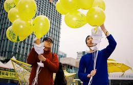 1 năm thảm họa chìm phà Sewol: Hàn Quốc vẫn chìm trong ký ức đau buồn