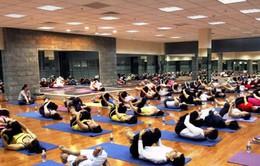 Miễn phí các hoạt động trong ngày Quốc tế Yoga 21/6