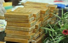 Sơn La: Tuyên án vụ mua bán 36 bánh heroin