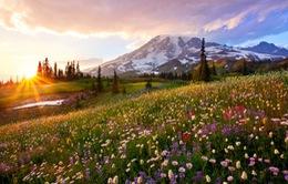 Ngắm nhìn vẻ đẹp rực rỡ của công viên quốc gia Mỹ qua ảnh instagram