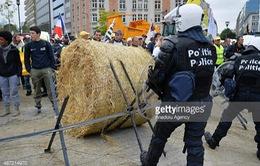 """Nông dân châu Âu kêu cứu vì giá nông sản """"rẻ như cho"""""""