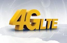 Thị trường điện thoại 4G tăng trưởng 400% tại vùng Vịnh