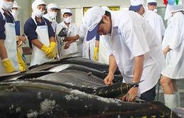 100% cá ngừ Việt Nam nhập khẩu vào Mỹ bị kiểm tra