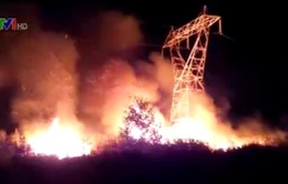 Báo động tình trạng gây mất an toàn đường dây 500kV Bắc Nam