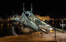 """Những cây cầu khiến người xem """"sửng sốt"""" nhất trên thế giới"""