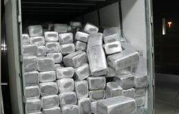 Mexico thu giữ hơn 2 tấn cocaine