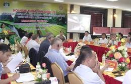 Tham vấn quốc tế về quản lý di sản quần thể danh thắng Tràng An