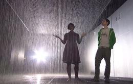 """Kỳ ảo triển lãm """"Căn phòng mưa"""" ở Thượng Hải, Trung Quốc"""