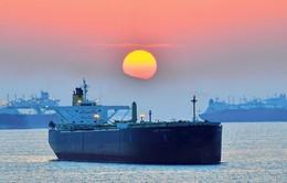 Dư thừa nguồn cung, hơn 100 triệu thùng dầu thô đang 'lênh đênh' trên biển