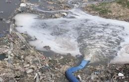 Chính phủ yêu cầu kiên quyết xử lý cơ sở gây ô nhiễm