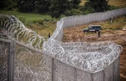 Hungary xây tường rào cao 4m ngăn người di cư