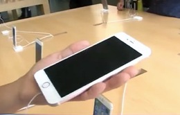 iPhone 6S màu vàng có giá thấp nhất