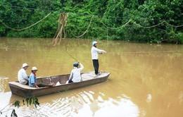 Lâm Đồng:Đầu tư 50 tỉ đồng xây dựng 9 cầu treo dân sinh