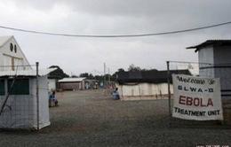 Liberia phát hiện 3 ca mắc mới Ebola