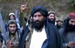 Một chỉ huy của IS bị tiêu diệt ở Afghanistan