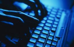 Mỹ: Hai người Việt bị truy tố vì lừa đảo 2 triệu USD qua mạng