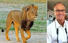Zimbabwe buộc tội du khách Mỹ giết hại dã man con sư tử Cecil