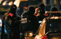 Bỉ mất dấu nghi phạm thứ 8 tấn công thủ đô Paris?