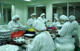 Kiểm tra nhà máy sản xuất thuốc trước khi quyết định nhập