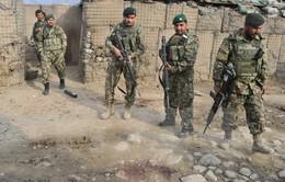 Pakistan và Afghanistan họp bàn về an ninh biên giới
