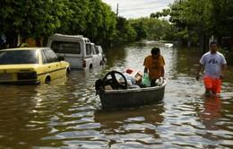 Hơn 150.000 người dân Mỹ Latinh sơ tán do lũ lụt