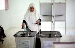 Công dân Ai Cập bắt đầu bầu cử Quốc hội giai đoạn hai