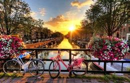 Trải nghiệm du lịch chia sẻ tại Amsterdam, Hà Lan