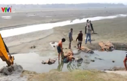 Ấn Độ: Phát hiện hơn 100 thi thể ở hai bên bờ sông Hằng