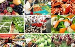 """Quảng Ngãi: Nhiều cơ sở kinh doanh """"phớt lờ"""" quy định an toàn vệ sinh thực phẩm"""
