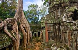 Khu đền Angkor ban hành quy định cấm chụp ảnh khỏa thân