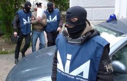 Italy: Băng đảng mafia mở rộng quy mô hoạt động