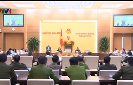 UBTV Quốc hội cho ý kiến về Dự thảo Luật tạm giữ, tạm giam