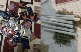 Cỏ Mỹ: Ma túy đội lốt thảo dược mua dễ hơn 'rau'