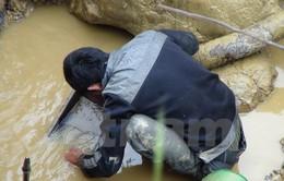 Bắt khẩn cấp 7 đối tượng cướp vàng tại Quảng Ninh