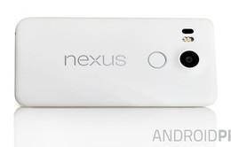 Google tổ chức lễ ra mắt bộ đôi Nexus mới ngày 29/9