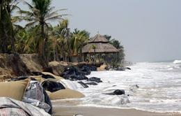 Chống sạt lở ở biển Cửa Đại: Loay hoay giải pháp và kinh phí đầu tư