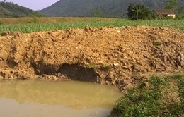 Thanh Hóa: Hai trẻ tắm ao bị đuối nướcthương tâm