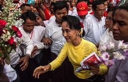 Đảng của bà Aung San Suu Kyi đủ điều kiện thành lập chính phủ mới