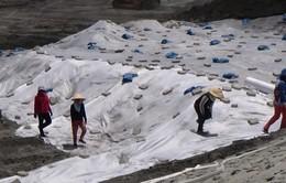 Sự cố bụi ở nhà máy Nhiệt điện Vĩnh Tân 2: Đã san gạt, che phủ thải xỉ